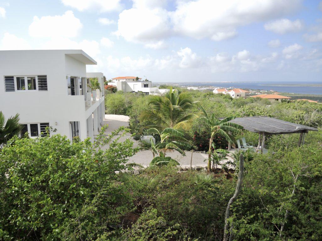 Tropical back yard with gazebo
